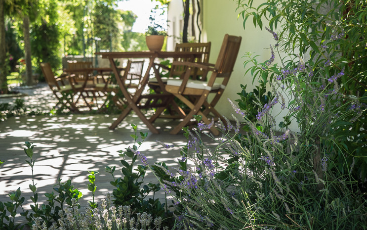 Estúdio Alfazema - Casa Soares Turismo Rural